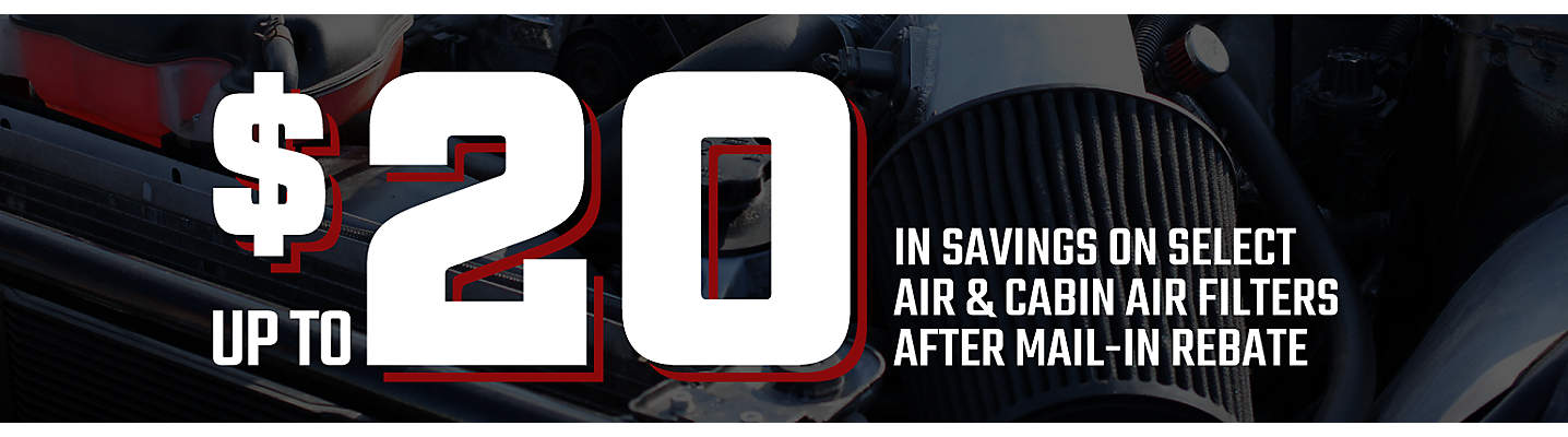 Air and Cabin Air Filter Savings