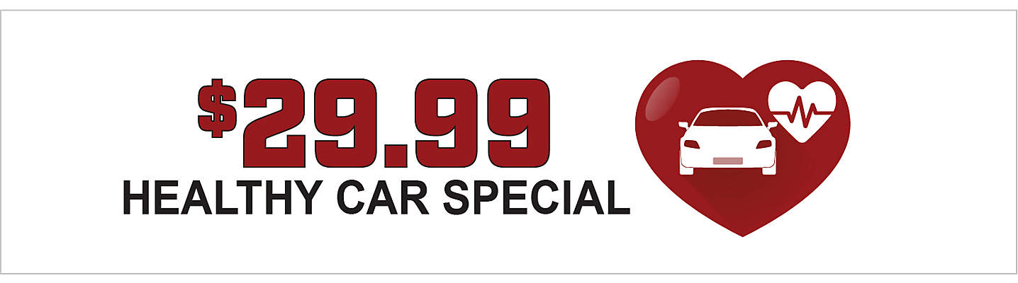 Healthy Car Special – only $29.99